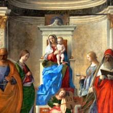 Calicot : Bellini