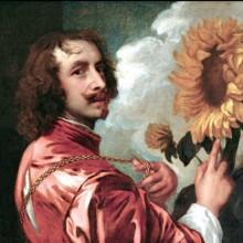 Calicot : Van Dyck