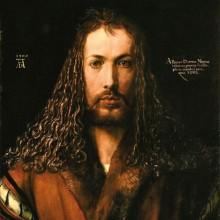 Calicot : Dürer