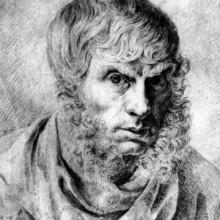 Calicot : Friedrich